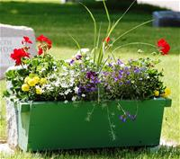 Flower box on grave