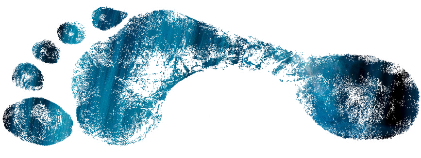Image of a blue and black storm water footprint.