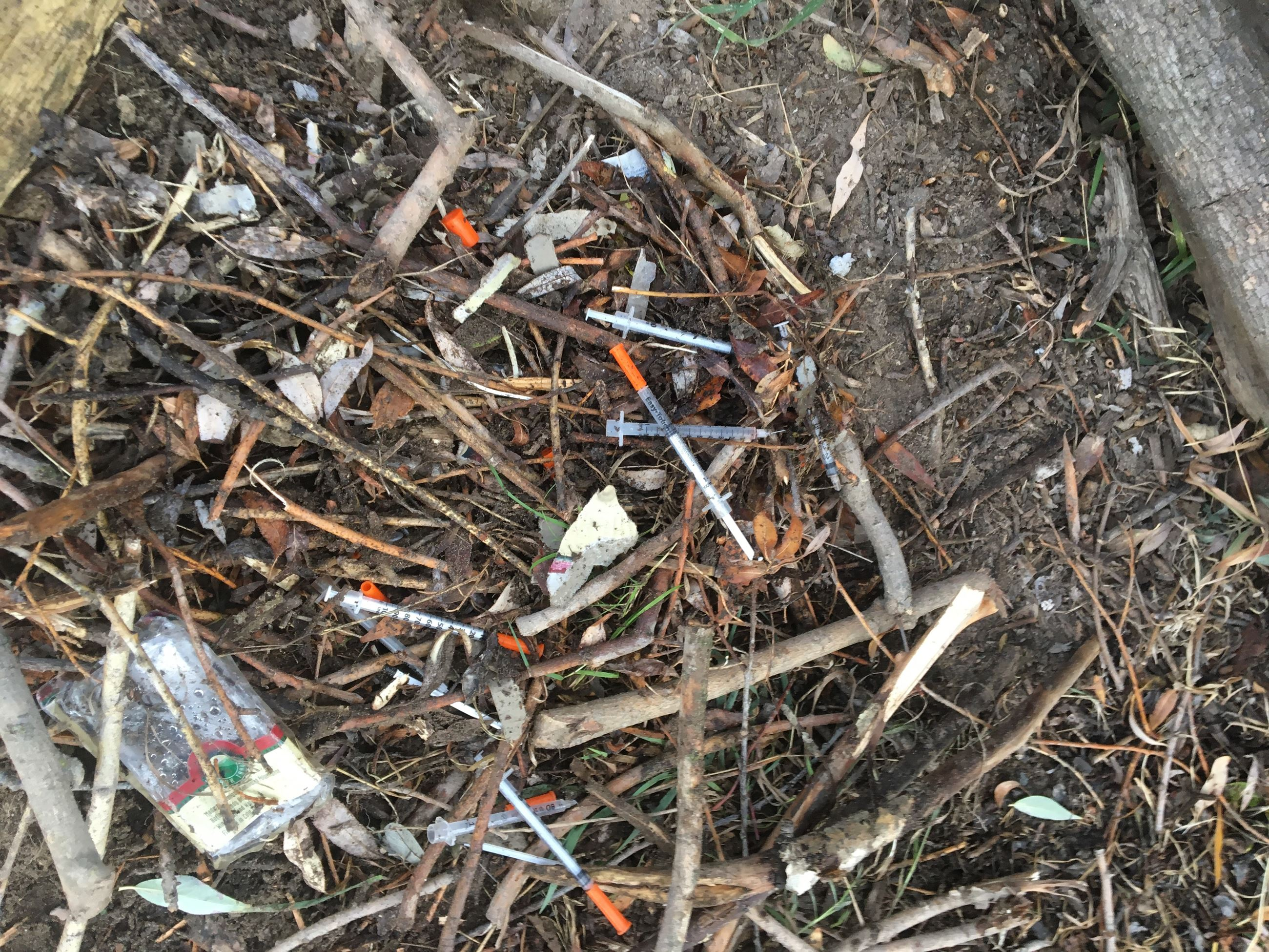 Image taken near the Clark Fork River Trail System, showing syringes laying on the ground where stor