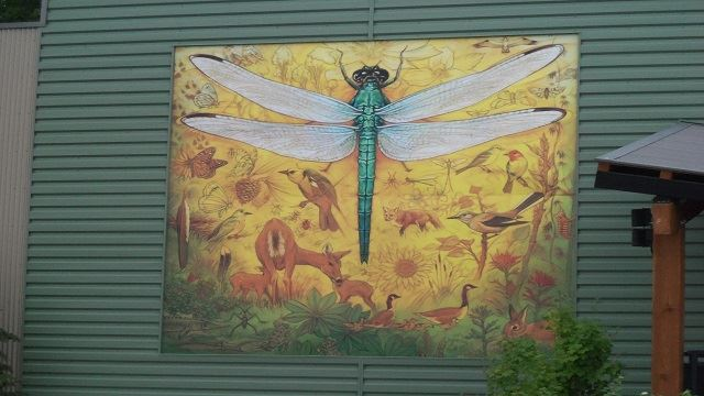 RF dragonfly painting 640 x 360